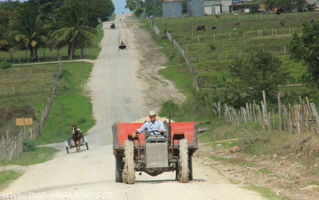 DURCHGANGSSTRASSE IN SHIPYARD - LINKS UND RECHTS FARMEN, FARMEN ...