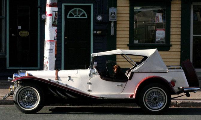 FUNNY CAR-DRIVER