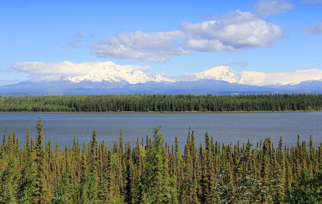 ENTLANG DER WRANGELL MOUNTAINS AM WILLOW LAKE