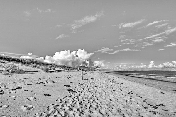 Amrum WW 02