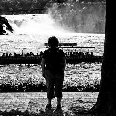Rhine Falls sw04