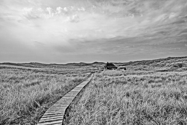 Amrum WW 56