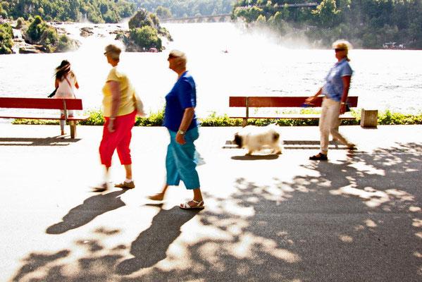 Rhine Falls col04