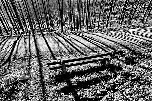 Wood sw36