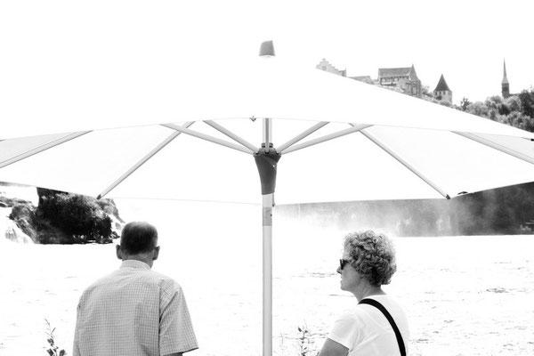Rhine Falls sw08