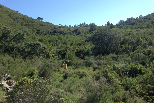 Op de top een groene vallei tussen de bergen