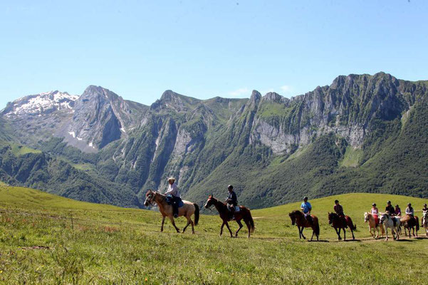 Equitation en vallée d'Aspe