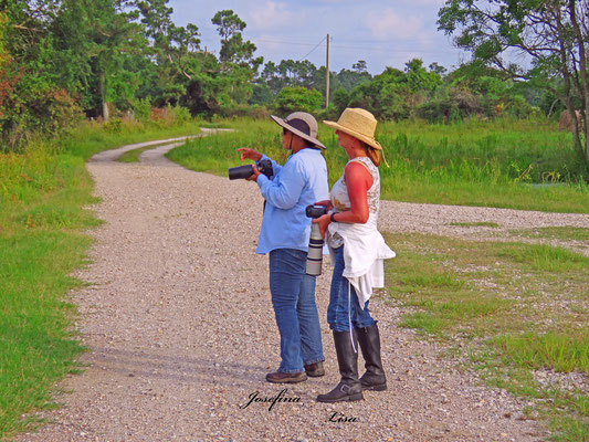 JOSEFINA AND LISA CAPTURING SOME GREAT SHOTS OF BABY GREEN HERONS WHILE BIRDING AT LAGOW RANCH LLC.