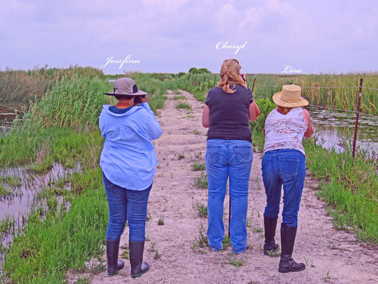 Some of our great birding buddies checking out some new bird arrivals at Lagow Ranch LLC.