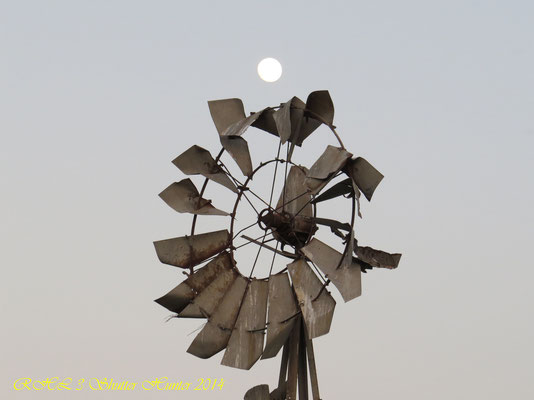 ONE OF OUR OLDER WINDMILLS PUT IN IN THE 1940'S TELLS THE STORY OF THE EFFECTS ON THE RANCH OF THE HURRICANE 'IKE'
