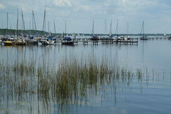 Die kleinen und größeren Boote schlafen noch im Wasser