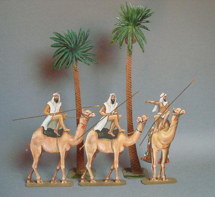 Schachtel 019 - Bild 11 - Ägypten Kamelreiter unter Palmen