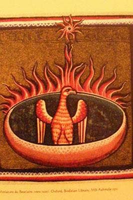 Le pratiquant de Qi Gong, en se concentrant sur le bas-ventre, fait que la particule de cinabre devient matière et que la pensée crée le feu qui va transformer le cinabre en mercure = Naissance du Phénix (l'oiseau de cinabre)
