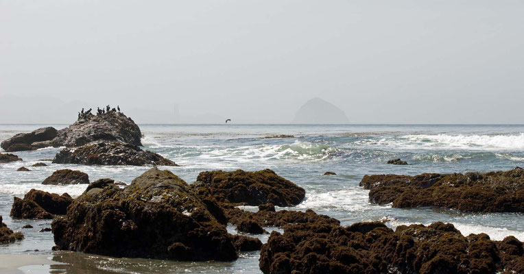 In der Ferne der Morro Rock, Estero Bluffs, California