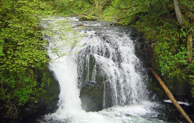 Multnohma Falls