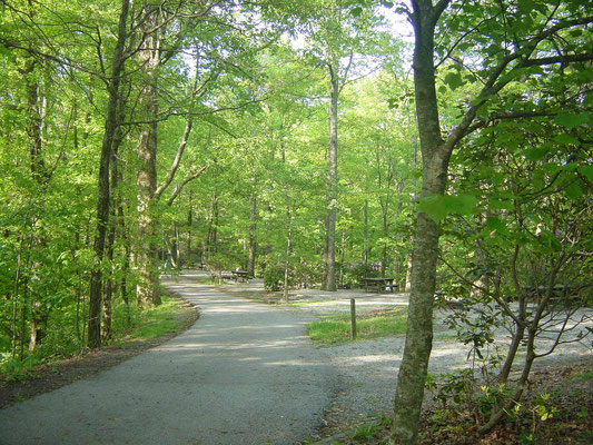 Campground des Black Rock Mountain State Parks