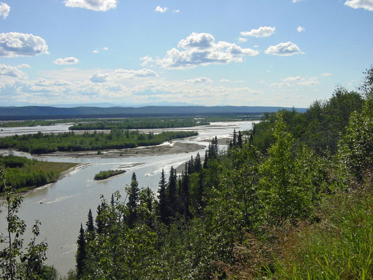 mäandernder Tanana River
