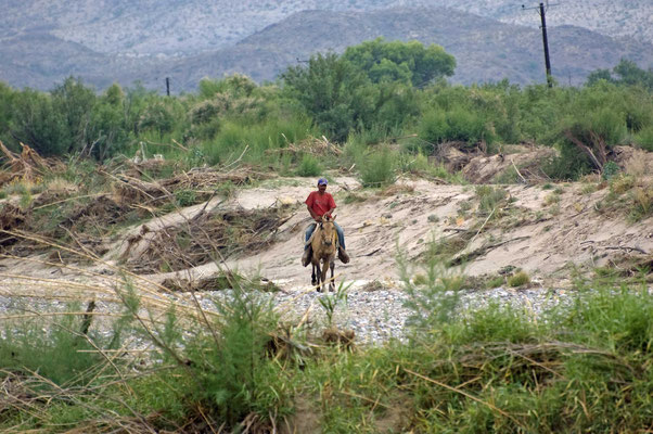 Charro - der traditionelle Vaquero (Cowboy) Mexikos