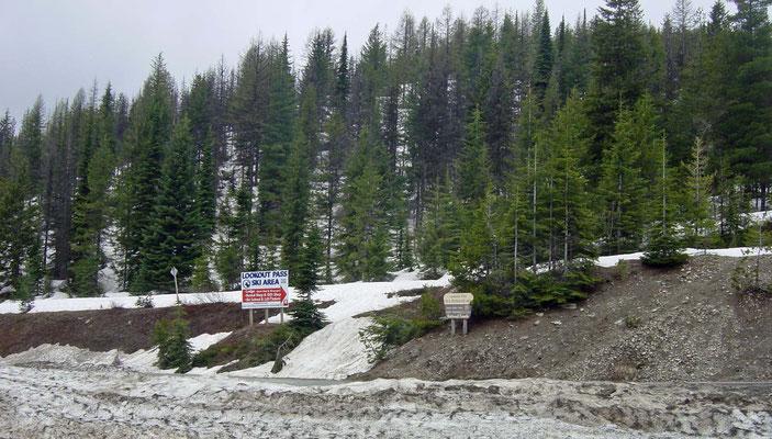 am Rastplatz hinter dem Lookout Pass, Montana