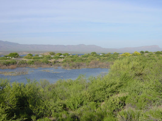 Tonto National Forrest am Theodore Roosevelt Lake