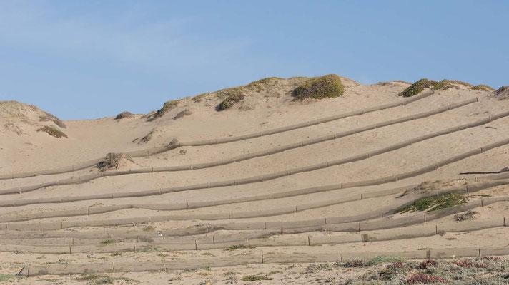 Marina Dunes Preserve, Montery Bay, California