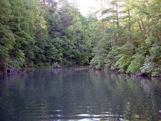Unicoi Lake