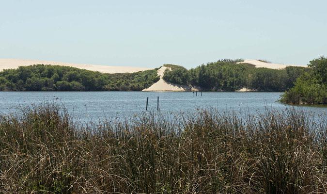 Guadalupe-Nipomo Dunes (Oso Flaco Lake), California