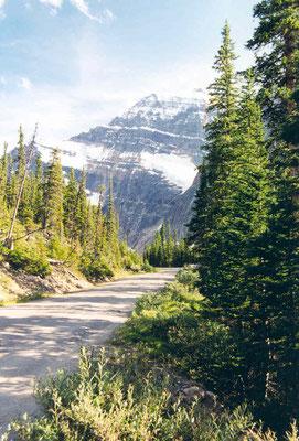 Straße zwischen Medicine Lake und Maligne Lake