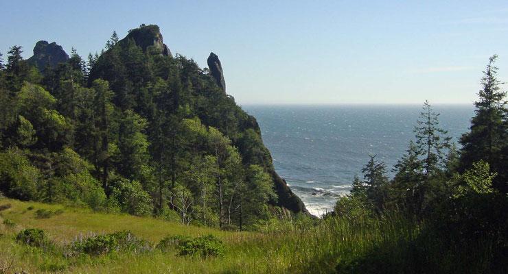 Blick von der US 101 in Oregon