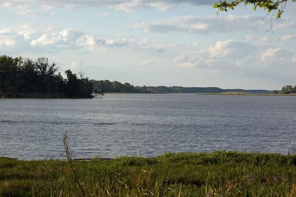 Lake Seminole, Three Rivers State Park (Florida)