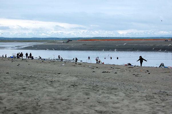 Cook Inlet/Kenai River - Lachsfischer