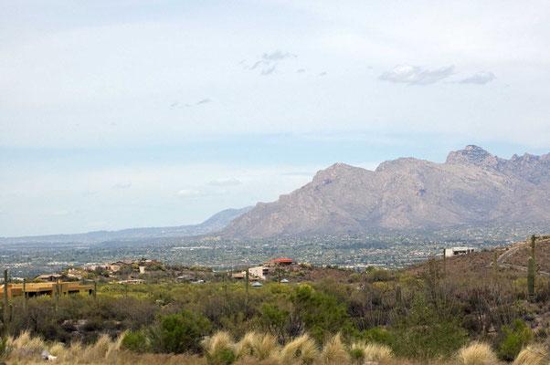 Blick auf Tucson vom Int'l Wildlife Museum