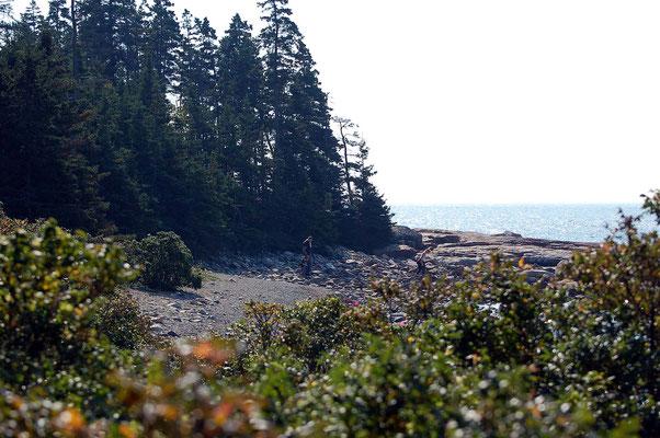 Wonder Land, Acadia