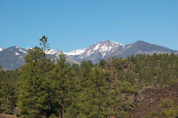 Blick vom Bonito Lava Flow auf den schneebedeckten Humphreys Peak