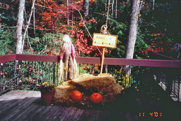 Herbstdekoration am Smith Creek