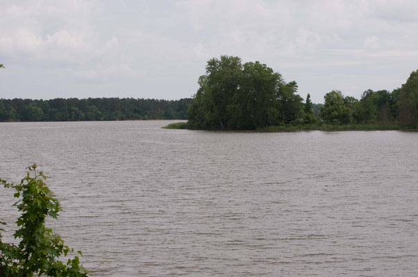 Florence Marina State Park
