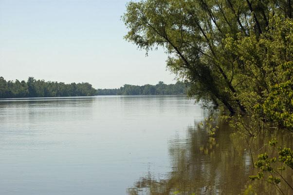 Atchafalaya River (Louisiana)