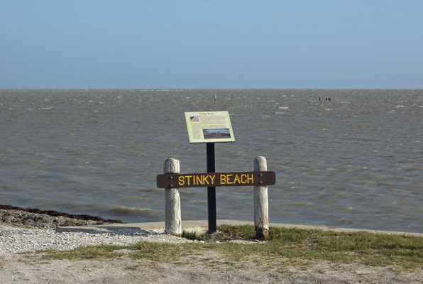 Stinkender Strand? Nur im Sommer, wenn die Meeresvegetation unter der heißen texanischen Sonne verfault.
