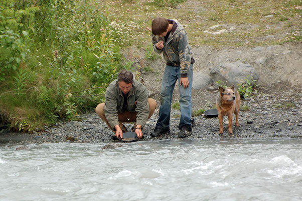 """Gold waschen"" am Eagle River"