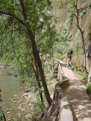 Wandern am Virgin-River