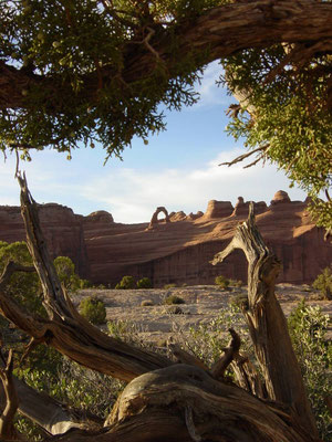 Delicate Arch, Arches Nationalpark