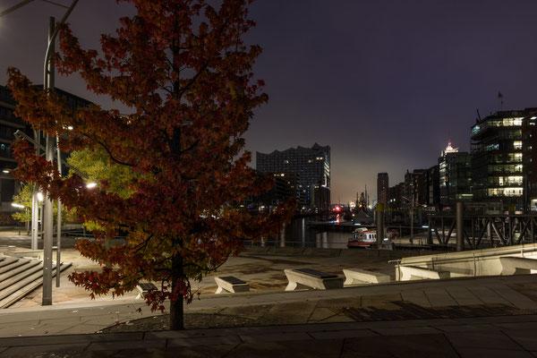 Elbphilharmonie und Hafen