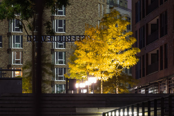 Überseequartier mit Herbstlaub