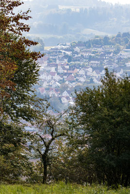 Blick auf Allendorf