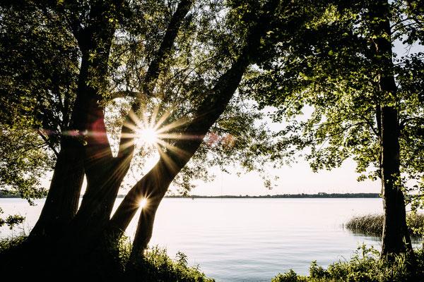 © Jonas Rothe Fotografie | www.bulli4camp.de auf Naturcamping ZWEI SEEN am Plauer See in der Mecklenburgischen Seenplatte