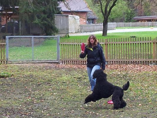 Nienna beim Frisbee mit Verena