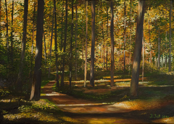 Bunter Wald, 50 x 70 cm (Oil on canvas)