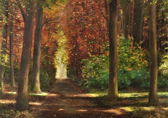 Farbigkeit , 50 x 70 cm (Öl auf Leinwand)