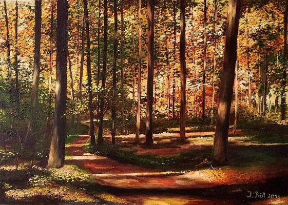 Bunter Wald, 70 cm x 50 cm (Öl auf Leinwand) (VERKAUFT)