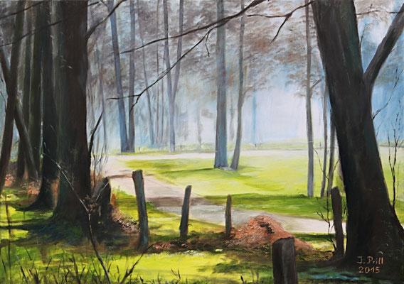 Stille, 50 x 70 cm (Öl auf Leinwand) (VERKAUFT)